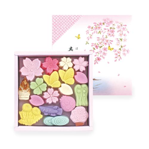 Spring's Wasanbon - Wagashi Sugar - Japanese confectionery