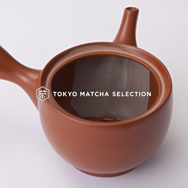 Tokoname kyusu - stainless tea strainer