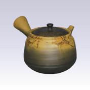 Tokoname Kyusu teapot - HAKUSAN - Algae Hanging - 250cc/ml - Pottery steel net