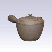 Tokoname Kyusu teapot - SEKIRYU - Algae Hanging - 280cc/ml