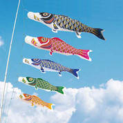 Koinobori Japanese Carp Streamer - 5 color - 1.5m/1.64yd - Nylon Gold