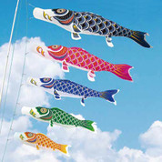 Koinobori Japanese Carp Streamer - 5 color - 1.5m/1.64yd - Nylon Standard