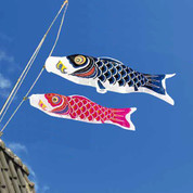 Koinobori Japanese Carp Streamer - 2 color - 1.5m/1.64yd - Nylon Super Satin
