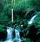 Shimanto River Tsunoyama - image4