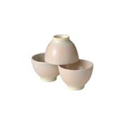 Shigaraki-yaki - RYOFU - 3 Chawan teacups