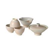 Shigaraki-yaki - RYOFU - Teapot set - 1 Shiboridashi, 1 Yuzamashi, 3 Chawans w box