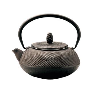 Nanbu cast iron teapot - ARARE - 300 ml/cc - 2 color