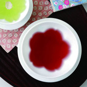 SAKURA Dish Plate : 2 size - Japanese Hasami White Porcelain for Dinner Teatime