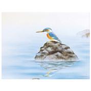 Kingfisher / Kawasemi - with wood box