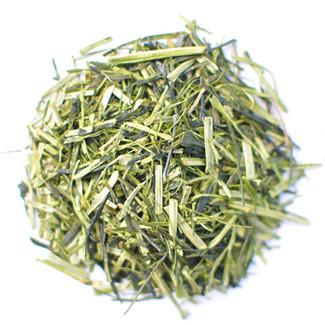 Kukicha Midori (green tea stems) 1kg (2.21lbs) bulk wholesale - leaf