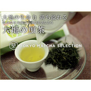Sencha of the Earth 80g (2.82oz)