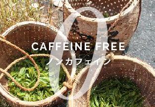 CAFFEIN FREE