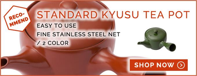 KYUSU TEA POT