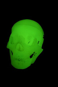First Quality Glow In the Dark Skull Halloween Prop