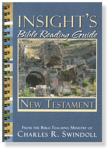 Insight's Bible Reading Guide: New Testament.  Paperback Book