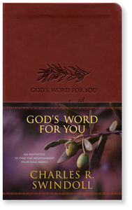 God's Word For You.  Leather Like Book