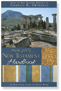Insights New Testament Handbook.  Paperback Book