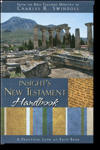 Insights New Testament Handbook.  Paperback Book