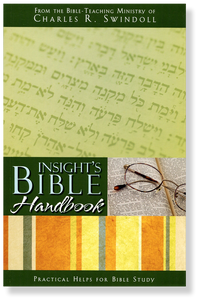 Insight's Bible Handbook.  Paperback Book