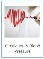 heart-and-circulation-2-.jpg