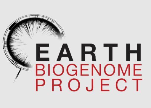 biogenoma.jpg