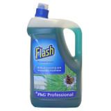 Flash All Purpose Pine 5L