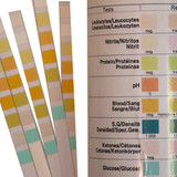 Multistix 8SG Test Strips