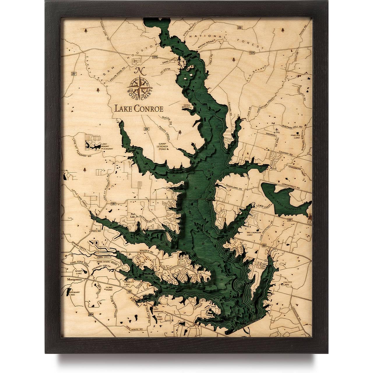 3d Map Of Texas.Lake Conroe