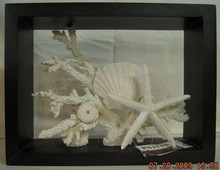 Palecek Beach Collage Shadow Box