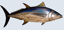 Fishtales Wooden Tuna