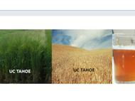 UC Tahoe Barley Malting Grain