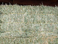 Grass Hay Supreme Mix