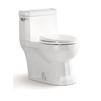 Select One Piece Toilet in White 06MUY-MY2116