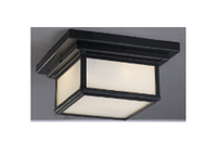 Active Home Centre 2 Light Ceiling Light in Oil Rubbed Bronze (30GR-GC2213N2ROB-ORB)
