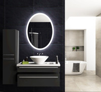 Active Home Centre Oval Mirror with LED Light (32QO-LOM75100C)