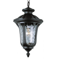 Active Home Centre Small Outdoor 1-Light Pendant in Black