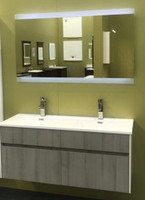 "Active Home Centre 48"" Double Wall Hung Vanity with Mirror"