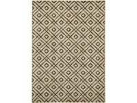 Ashley Jui Medium Rug in Brown and Cream