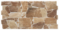 "Active Home Centre Nervion Cotto MT 10""x 20"" Ceramic Wall Tile"