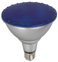 Active Home Centre 15W LED Bulb in Blue