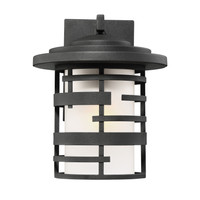 Active Home Centre Medium Outdoor 1 Light Wall Sconce in Oil Rubbed Bronze