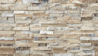 "New Arrival - Active Home Centre 37082 12""x 22"" Ceramic Wall Tile (11KAR-37082)"
