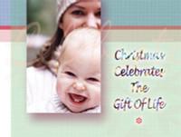 Christmas Cards 120