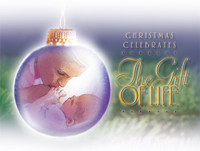 Christmas Cards 126