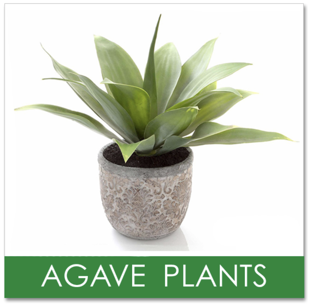 Artificial Agave Plants