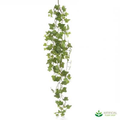 Hanging Ivy Leaf Bush