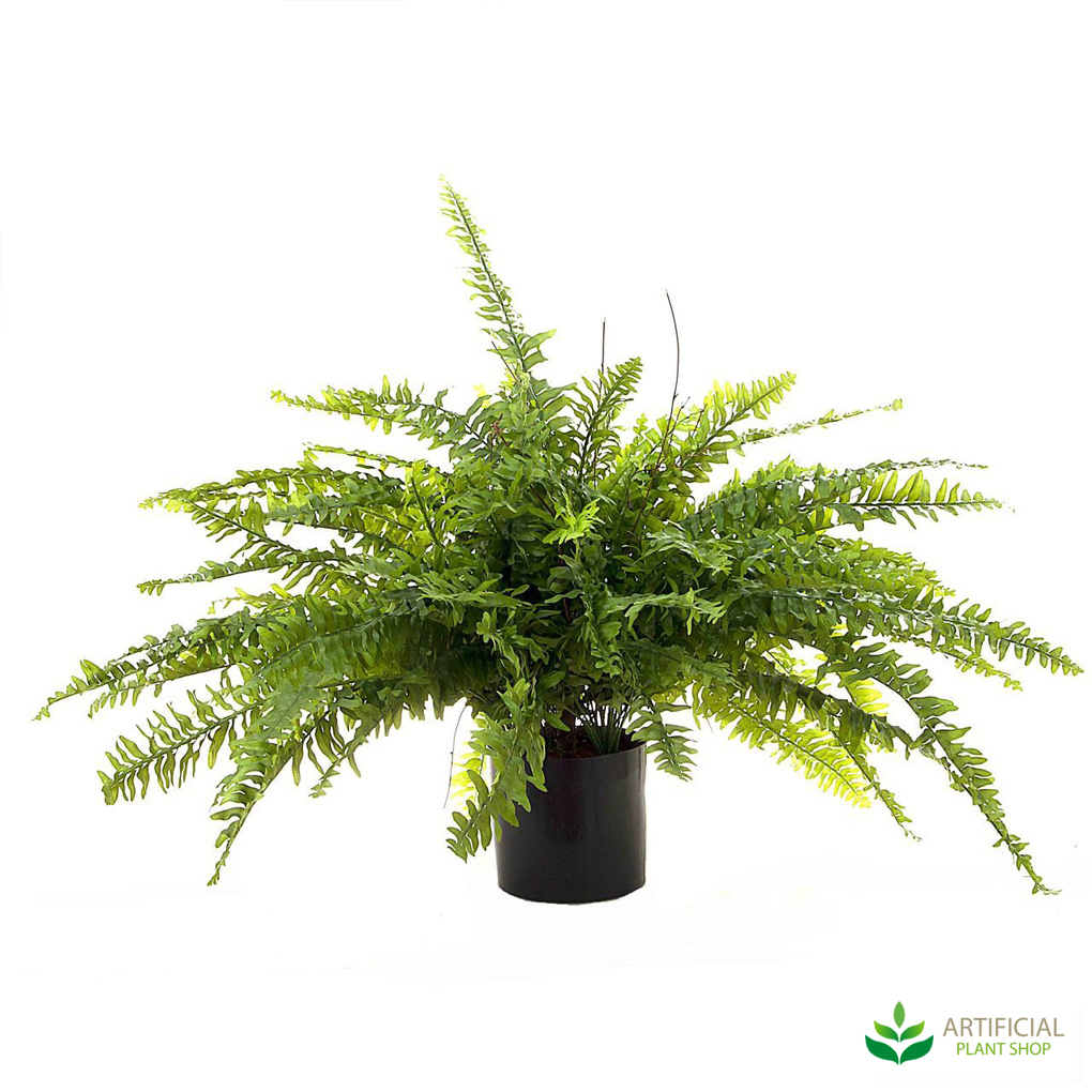 Artificial Boston Fern 80cm