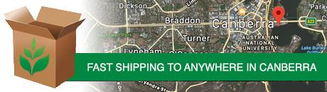 canberra-shipping.jpg