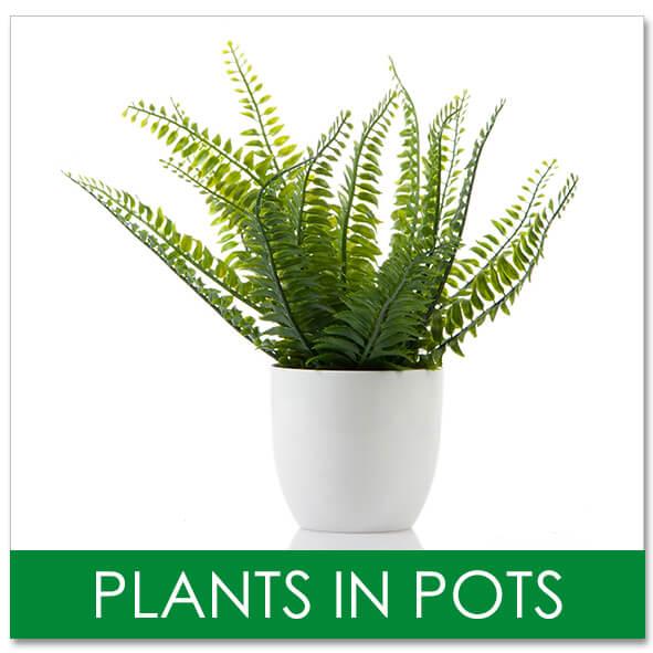 Fake Plants in Pots