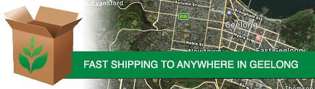 geelong-shipping1.jpg